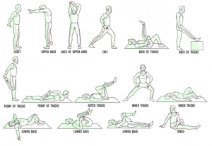 Basic-Stretching-Poses